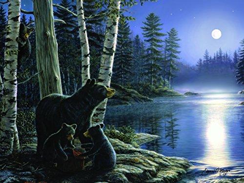 moonlight bear - 9