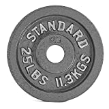 CAP Barbell Olympic 2-Inch Weight Plate, Gray 35 LBS (15.8 KGS), Single Review