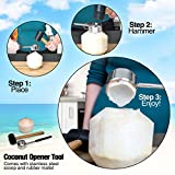 Coconut Opener Tool Set - Safe and Easy - Stainless Steel Opener with Wooden Mallet for Young Coconuts