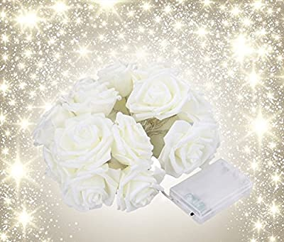 Avanti 20-Light LED Battery-Operated String Light Rose Flower Indoor Outdoor All Occasion Party Decor