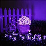 Solar Fairy String Lights 21ft 50 LED Purple Blossom Decorative Gardens, Lawn, Patio, Christmas Trees, Weddings, Parties