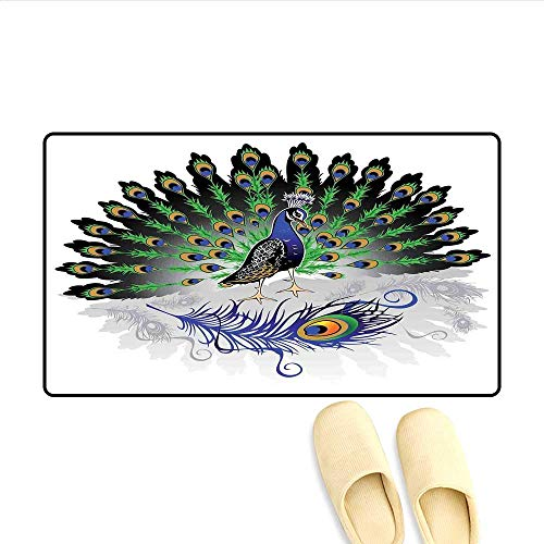 Bath Mat Male Peacock with Open Tail Reflection Illustration Crowned Majestic Bird Tropics Door Mats for Home 16
