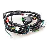 Wiring Loom (WRLM166)