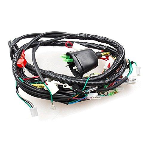 Wiring Loom (WRLM166):