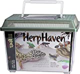 Lee's Herp Haven, Small, color may vary