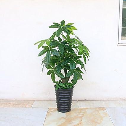 Amazon.com: 1M simulation of artificial flowers plants ...