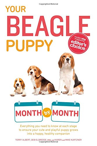 Your Beagle Puppy Month by Month: Everything you need to know at each stage to ensure your cute & playful puppy gr