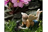 Miniature Fairy Garden Limited Edition Boy Fairy With Dog Ross and Winston, Model: 74, Home/Garden & Outdoor Store