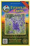 Everwilde Farms - 100 Tall Larkspur Native Wildflower Seeds - Gold Vault Jumbo Seed Packet