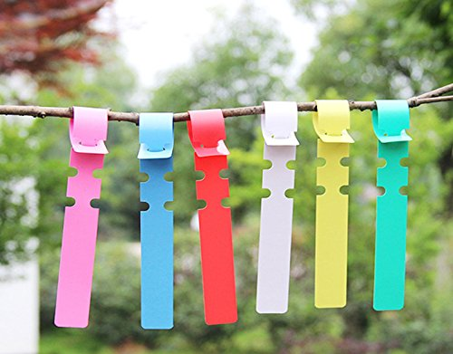 KINGLAKE 600 Pcs 6 Colors Plastic Plant Hanging Tree Tags Nursery Garden Lables Tags Large Writing Surface,2x20cm by KINGLAKE