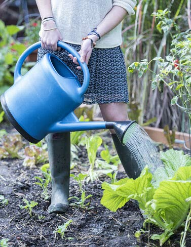 French Blue Watering Can for Indoor/Outdoor Gardening Holds 3 Gallons