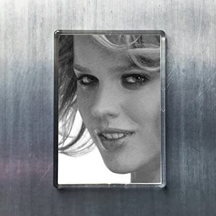 Amazon com: Seasons EVA HERZIGOVA - Original Art Fridge