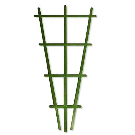 Elixir jardines® Celosía de plástico verde 59 cm x 30 cm): Amazon ...