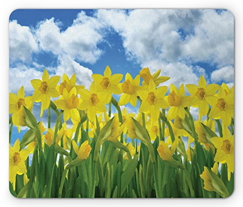 Lunarable Daffodils Mouse Pad, Field of Daffodil Flowers Against Summer Sky Cloudscape Picture Print, Standard Size Rectangle Non-Slip Rubber Mousepad, Yellow Green Blue