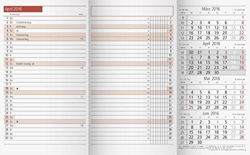 rido/idé 7040300 Taschenkalender TM 12 Ersatzkalendarium (2 Seiten = 1 Monat, 87 x 153 mm, Karton-Umschlag, Kalendarium 2020, plus Ausklappteil)
