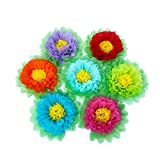 SD SPARKLING DREAM Tissue Paper Flower Paper Pom Pom Decorations for Christmas Party Birthday Celebration Wedding and Outdoor Decoration - Set of 7 pcs (Rainbow)