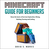 Minecraft Guide for Beginners: Know the Basics of