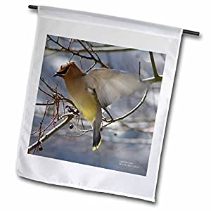 Lee Hiller Photography Hot Springs National Park Wildlife - Cedar Waxwing Flying onto a Branch - 12 x 18 inch Garden Flag (fl_5042_1)