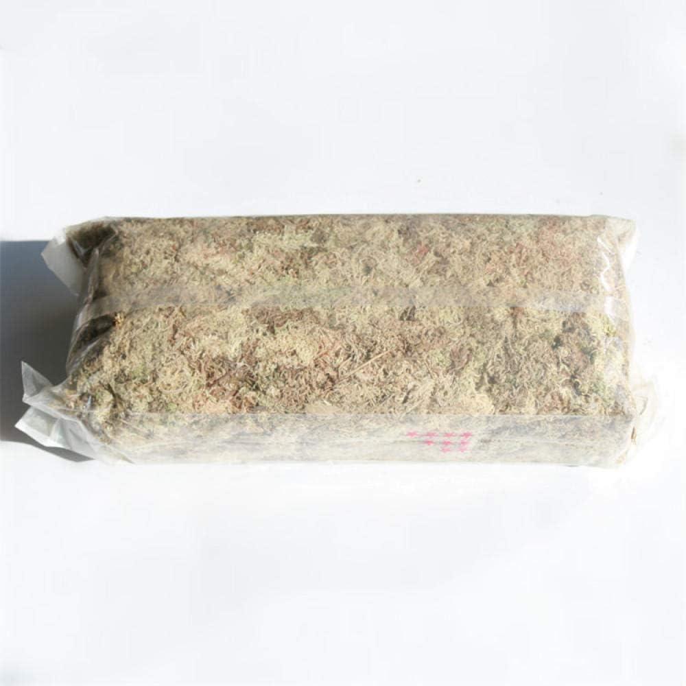 LIUKLAI Sphagnum Phalaenopsis aséptico comprimido seco Musgo Medio de Cultivo suculento sin Suelo