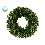 17-Preserved-Boxwood-Wreath-Green-Pack-of-2