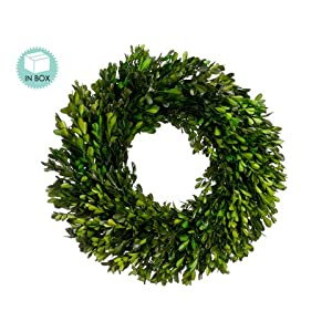 "17"" Preserved Boxwood Wreath Green (Pack of 2) 47"