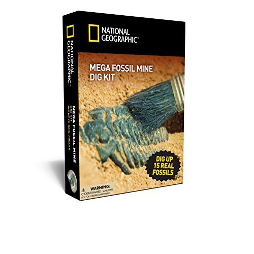 NATIONAL GEOGRAPHIC Mega Fossil Mine – Dig Up 15 Real (Dinosaur Kit)