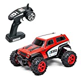 Metakoo RC Car Off Road High Speed 40km/h 1:24 Scale 50M Remote Control 40mins Playing Time 4WD 2.4GHz Electric Vehicle with Rechargeable Battery (Charger Included) - Red