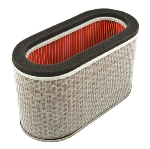 Hiflofiltro HFA1923 Premium OE Replacement Air Filter