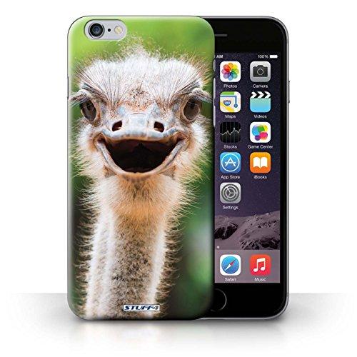 Kobalt® protector duro de nuevo caso / cubierta para el iPhone 6+/Plus 5.5 | Avestruz/UEM Diseño | Animales de la fauna colección