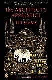 The Architect's Apprentice: A Novel