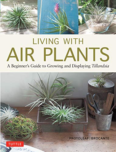 Living with Air Plants: A Beginner's Guide to Growing and Displaying Tillandsia ()