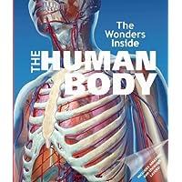 The Wonders Inside The Human Body