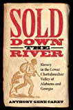 img - for Sold Down the River: Slavery in the Lower Chattahoochee Valley of Alabama and Georgia book / textbook / text book