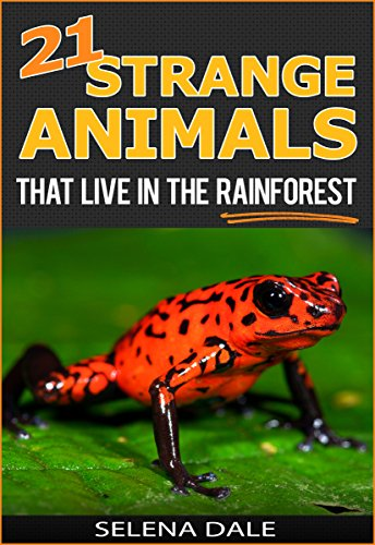 21 strange animals that live in the rainforest extraordinary 21 strange animals that live in the rainforest extraordinary animal photos facinating fun facts fandeluxe Image collections