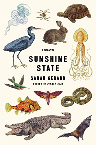 Sunshine State: Essays cover