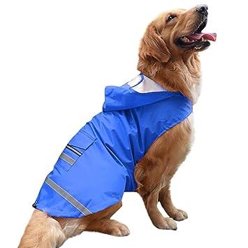 DYYTR Perro de la Mascota Capa de la Lluvia Ropa Perrito ...
