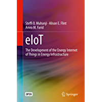 eIoT: The Development of the Energy Internet of Things in Energy Infrastructure (English Edition)