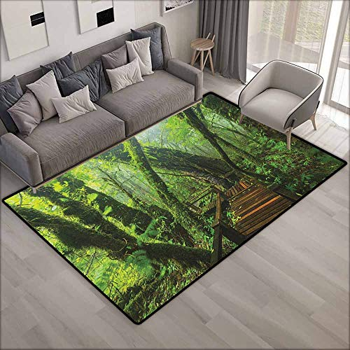 Large Area Rug,Forest Entrance to Deep Dark Evergreen Jungle Magical Surreal Extreme Vivid Plants Jungle,Anti-Static, Water-Repellent Rugs,6'6