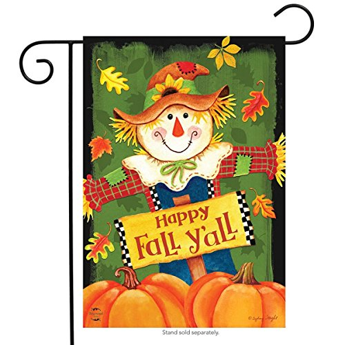 Briarwood Lane Fall Y'all Scarecrow Primitive Garden Flag Autumn Leaves 12.5