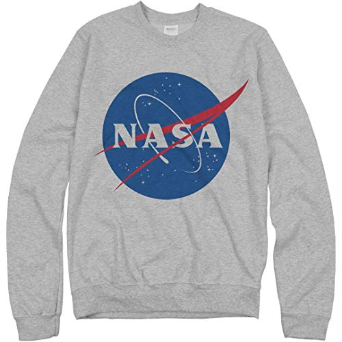 - NASA Logo Grey Sweater: Unisex Gildan Crewneck Sweatshirt