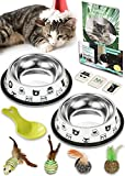 Nornor Cat Bowl Set - 2 Pack Stainless Steel Cat Food Bowls Easy To Clean with Non Skid Rubber Bottom, Food & Water Cat Dish, 4 Toys Natural Materials, 1 Cup Of Kitten Food & Tips Book