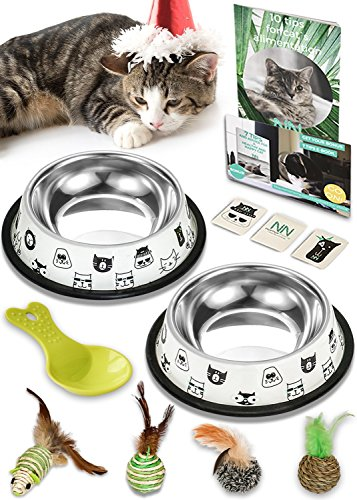 Nornor Cat Bowl Set - 2 Pack Stainless Steel Cat Food Bowls Easy To Clean with Non Skid Rubber Bottom, Food & Water Cat Dish, 4 Toys Natural Materials, 1 Cup Of Kitten Food & Tips Book by Nornor Home
