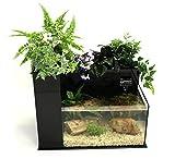 Fin to Flower Aquaponic Aquarium - Large System C (Black)