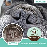 Natural Dog Company Snout Soother, Dog Nose Balm