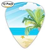 Guitar Picks Seaside Medium Customized Complete Assorted 12 Pack