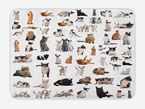 Lunarable Cat Lover Bath Mat, Group of Cats and Kitten Lying Down Meowing Purebred Norwegian Siamese, Plush Bathroom Decor Mat with Non Slip Backing, 29.5 W X 17.5 W Inches, Marigold Grey White