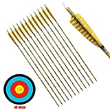 800 spine carbon arrows - PG1ARCHERY 30 Inch Carbon Arrows, 12 Pack Archery Practice Target Hunting Arrow Turkey Feathers Fletched 5 Inch with Removable Screw-in Field Points Tips for Compound & Recurve Bow Yellow