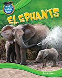 Elephants, Ruth Owen, 1615334157