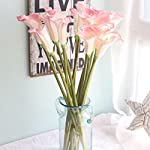 Meide-Group-USA-25-Large-Handmade-Real-Touch-Latex-Calla-Lilly-Artificial-Spring-Flowers-for-Arrangements-Bouquets-Weddings-and-centerpieces-Pack-of-5-Pink-and-White