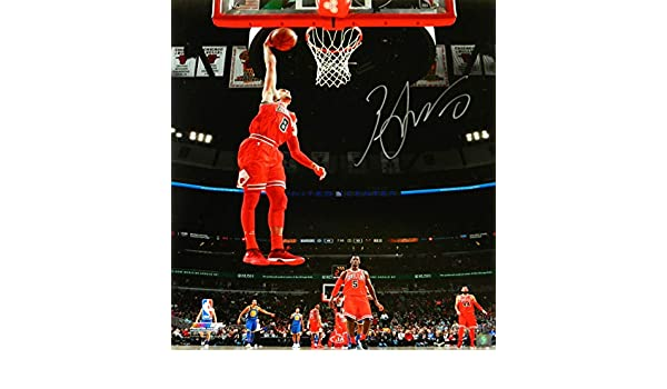 0c0fd7acd Zach LaVine Signed Chicago Bulls One Hand Dunk Action 16x20 Photo at  Amazon s Sports Collectibles Store